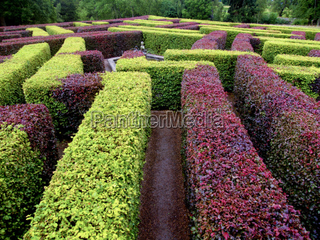 edgerow garden labyrinth green and red