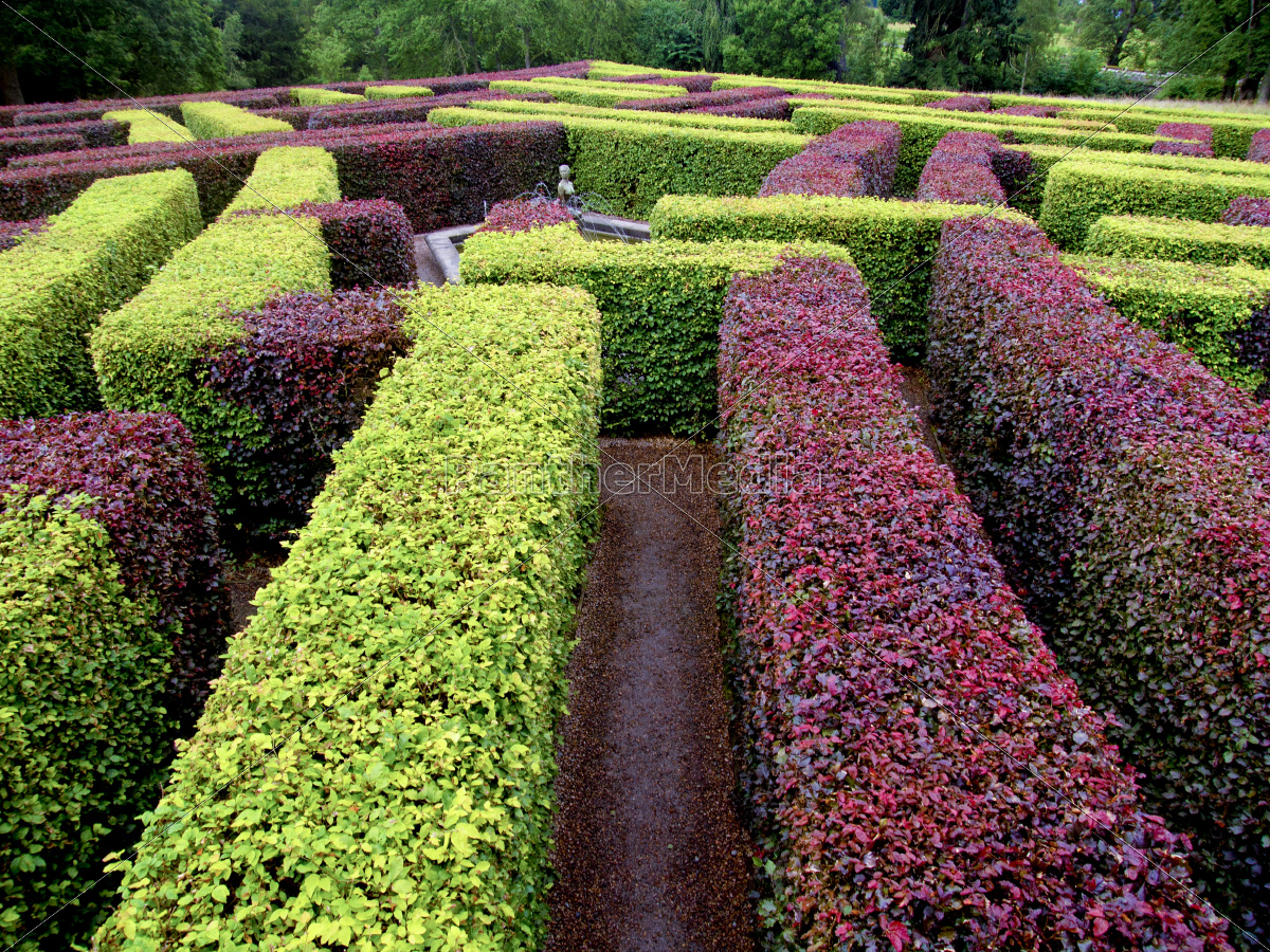 edgerow, garden, labyrinth, green, and, red - 10003384
