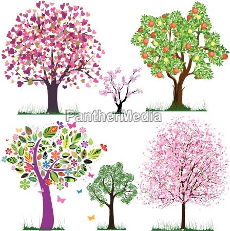 vector favolosi alberi