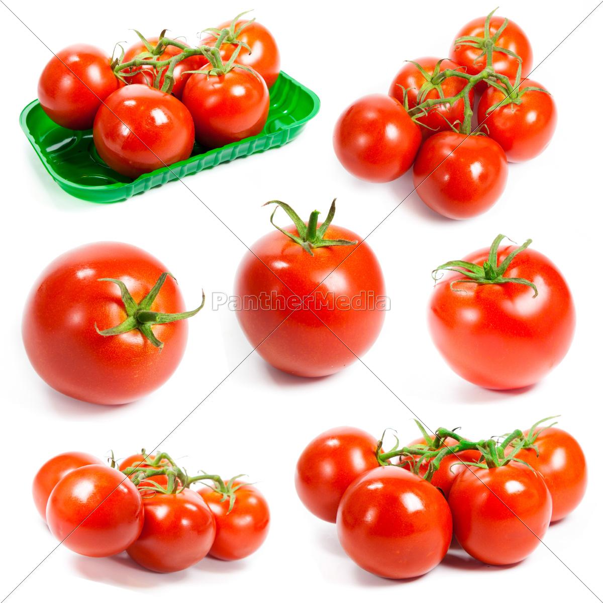 fresh, tomatoes, set., tomatoes, on, white - 10026324