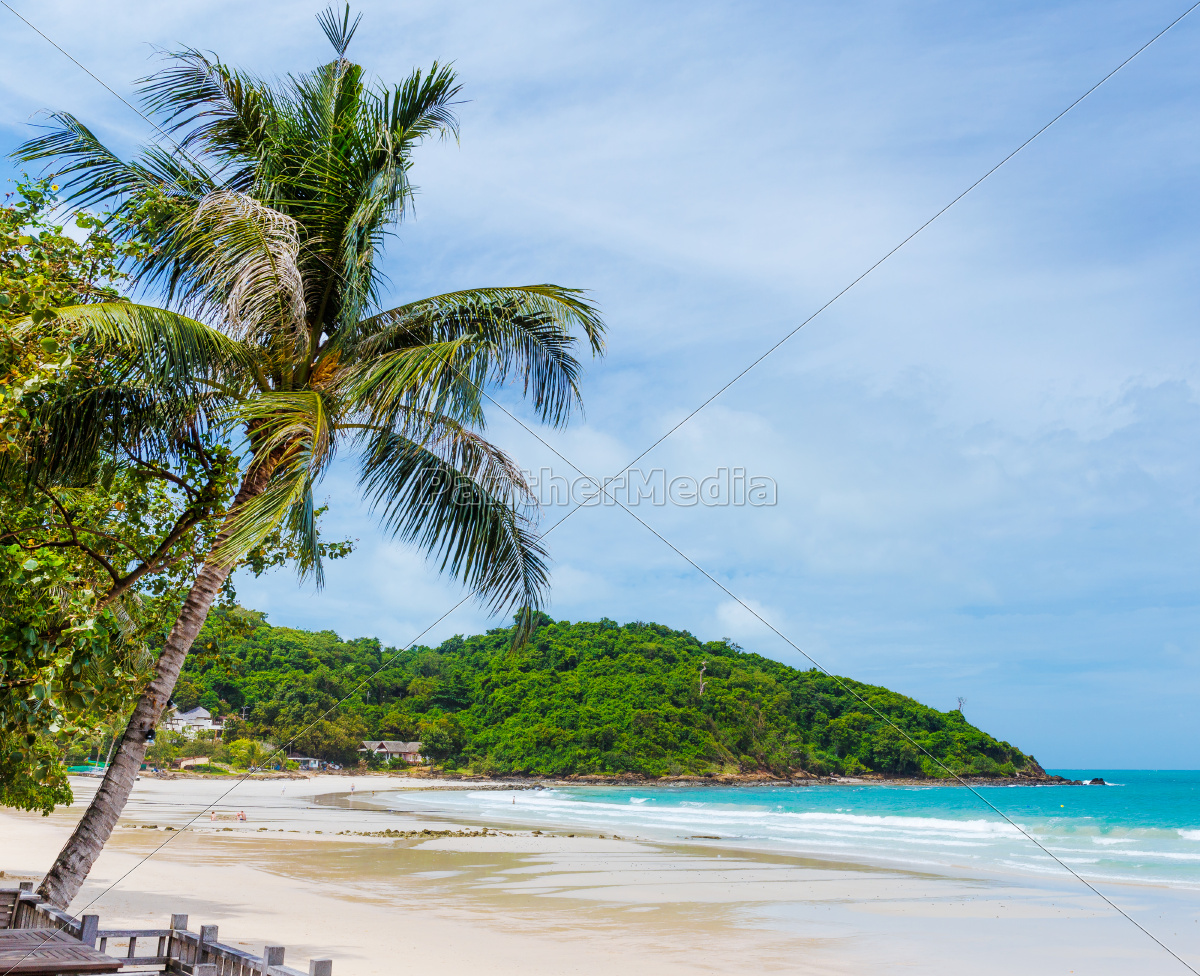 tropical, beach, with, palm, trees - 10064874