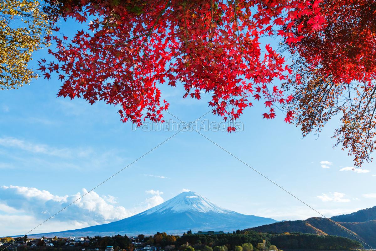mt., fuji, in, autumn - 10065064