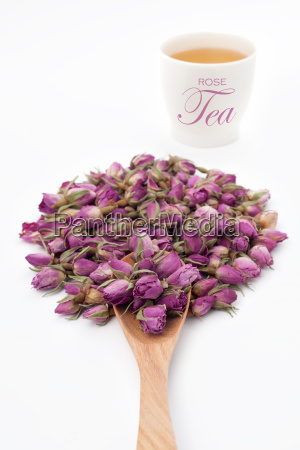 rose flower with a cup of