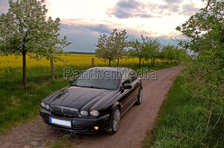 roadtrip on the rapsfeld