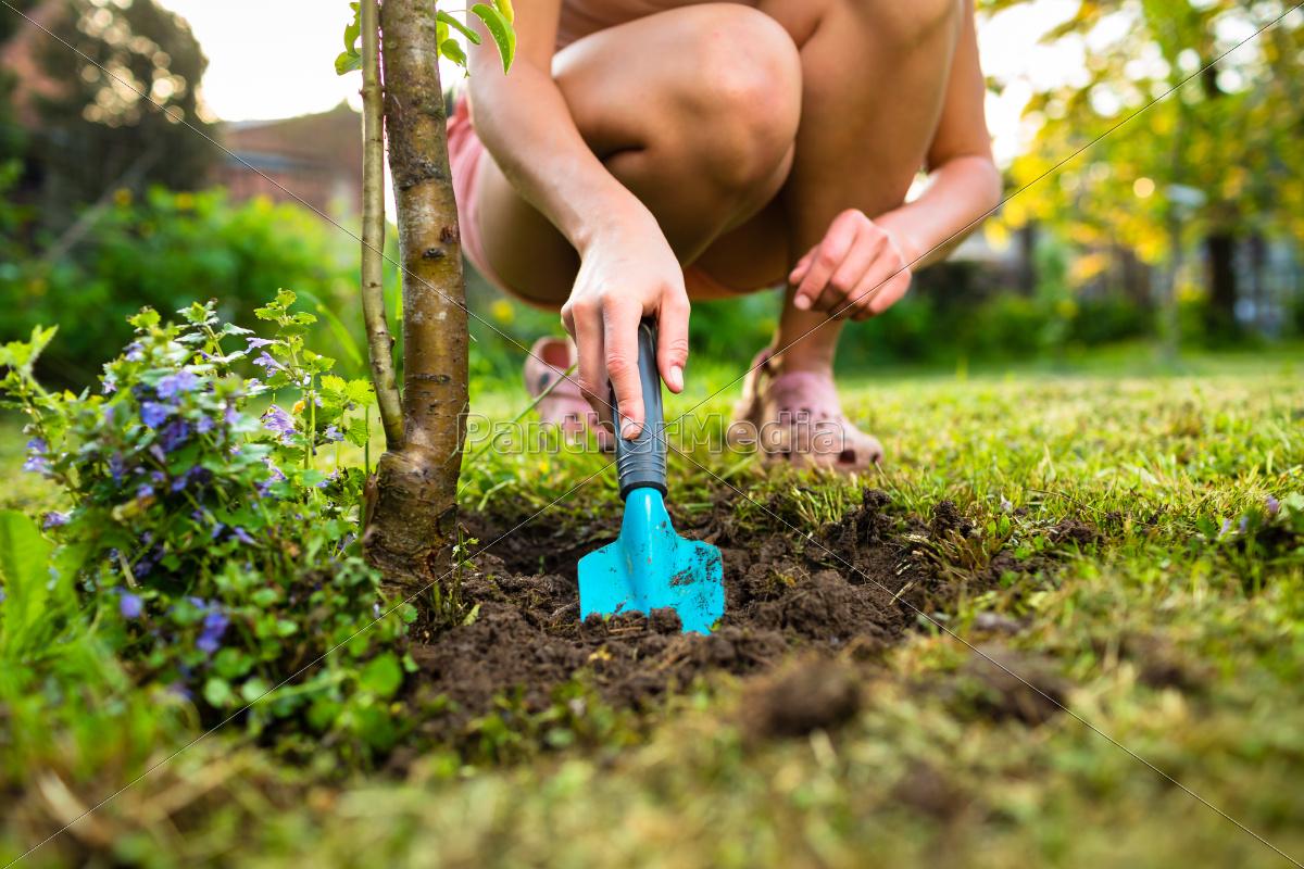 pretty, female, gardener, taking, care, of - 10110701