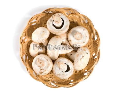 mushrooms in a wooden basket