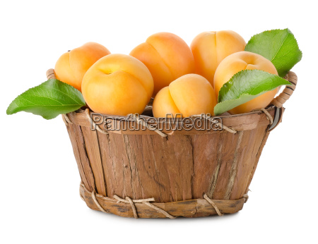 apricots, in, a, basket, isolated - 10122745