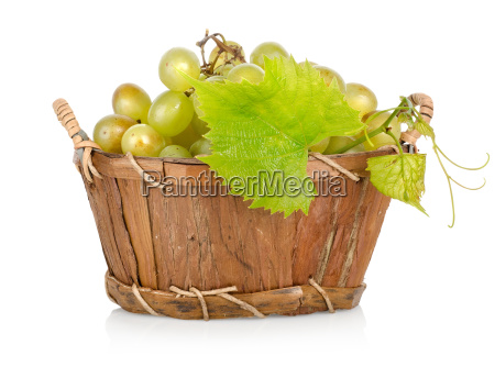 grapes in a basket isolated