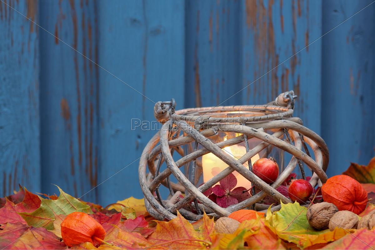 colored, autumn, wind, light, in, autumn, - 10141905