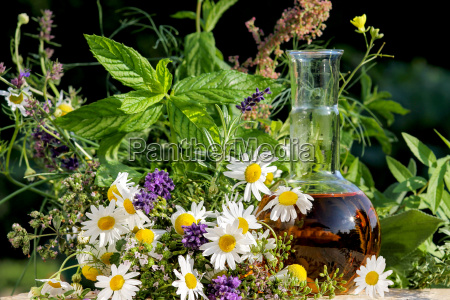 homeopathy, with, chamomile, thyme, among, others, medicinal, herbs - 10142183