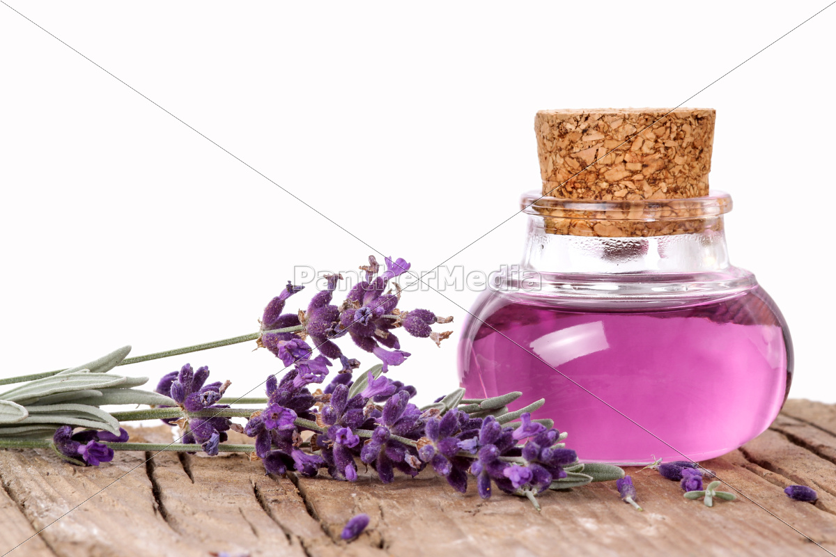 lavender, oil, for, relaxation - 10142185