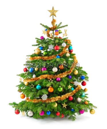 poet colorful christmas tree