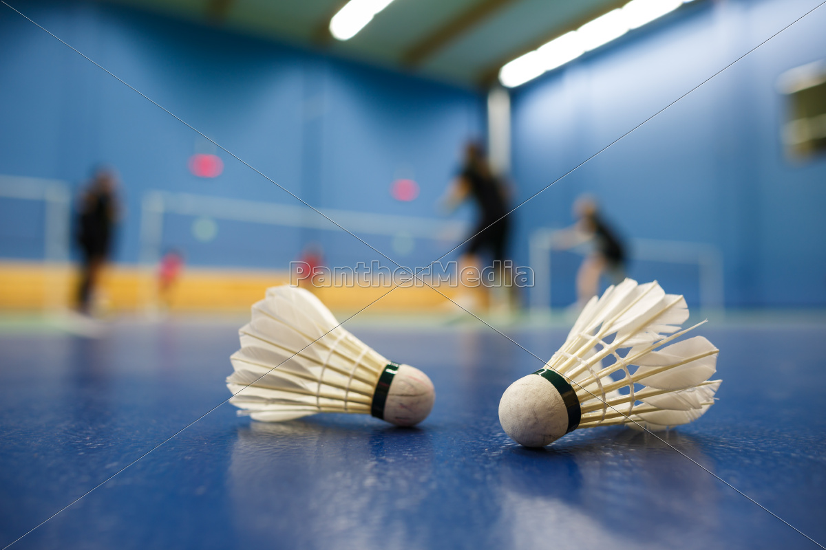 badminton, -, badminton, courts, with, players - 10188977