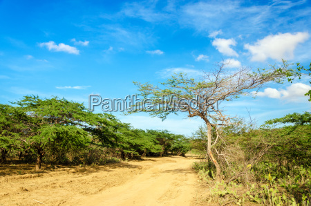 dirt road and blue sky