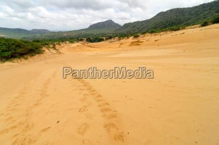 footprints on a sand dune