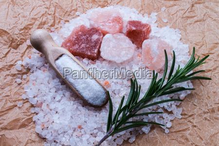 salt - 10219041