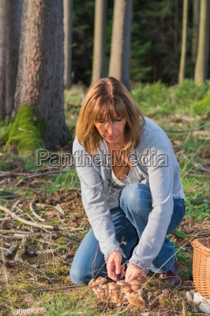 woman collects mushrooms