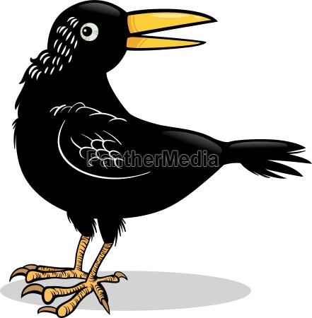 crow or raven bird cartoon illustration