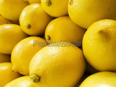 lemon macro
