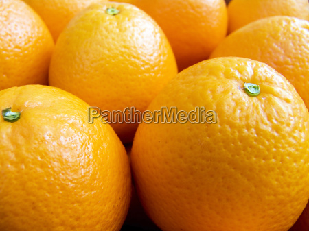 oranges on a counter macro