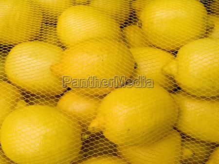 lemons behind a grid