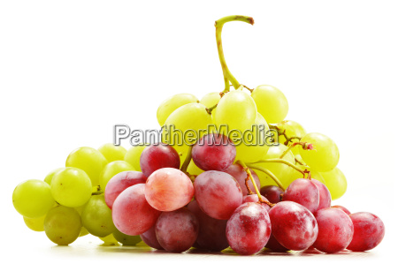 bunch of fresh grapes isolated on