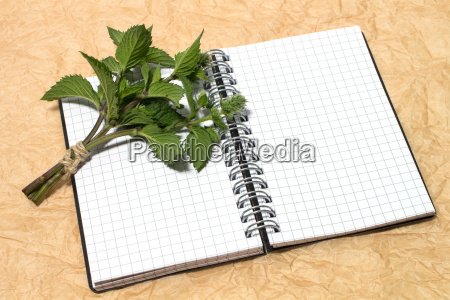 peppermint with notepad
