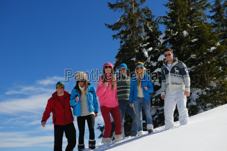 friends have fun at winter on