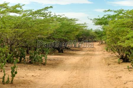 desert dirt road