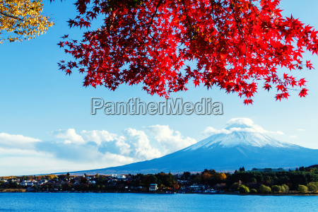 mt., fuji, in, autumn - 10261301