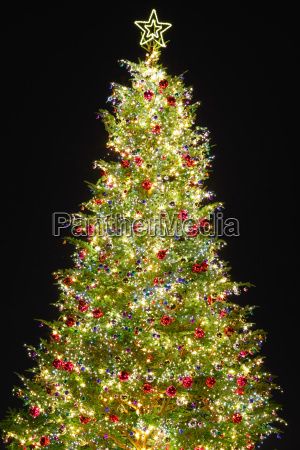 christmas tree with decoration
