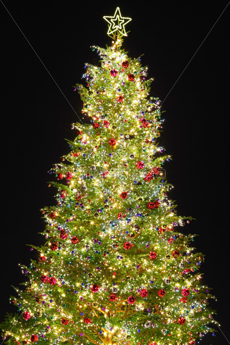 christmas, tree, with, decoration - 10262955