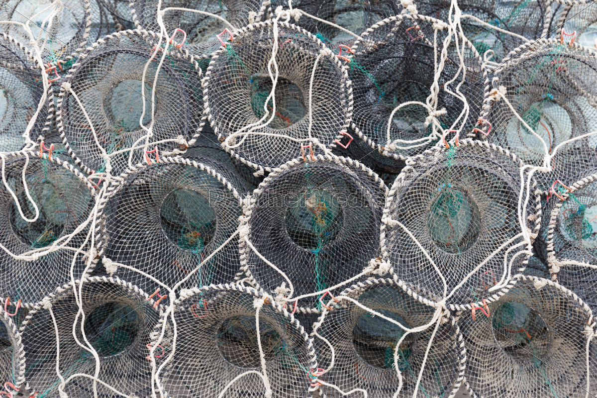 traps, for, capture, fisheries, and, seafood - 10262839