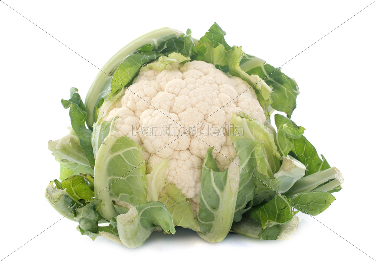 cauliflower - 10298765