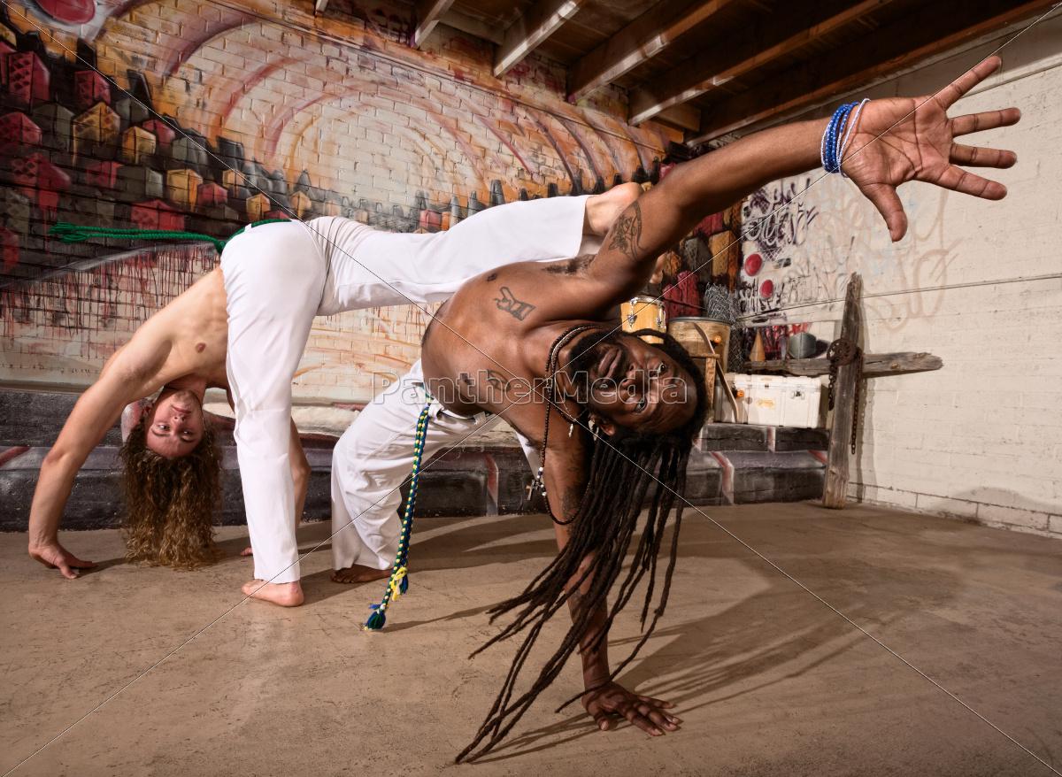 expert, capoeira, performers - 10300959