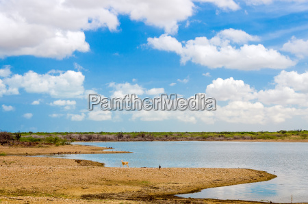 lake in la guajira