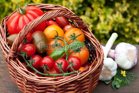 fresh, harvest - 10323561