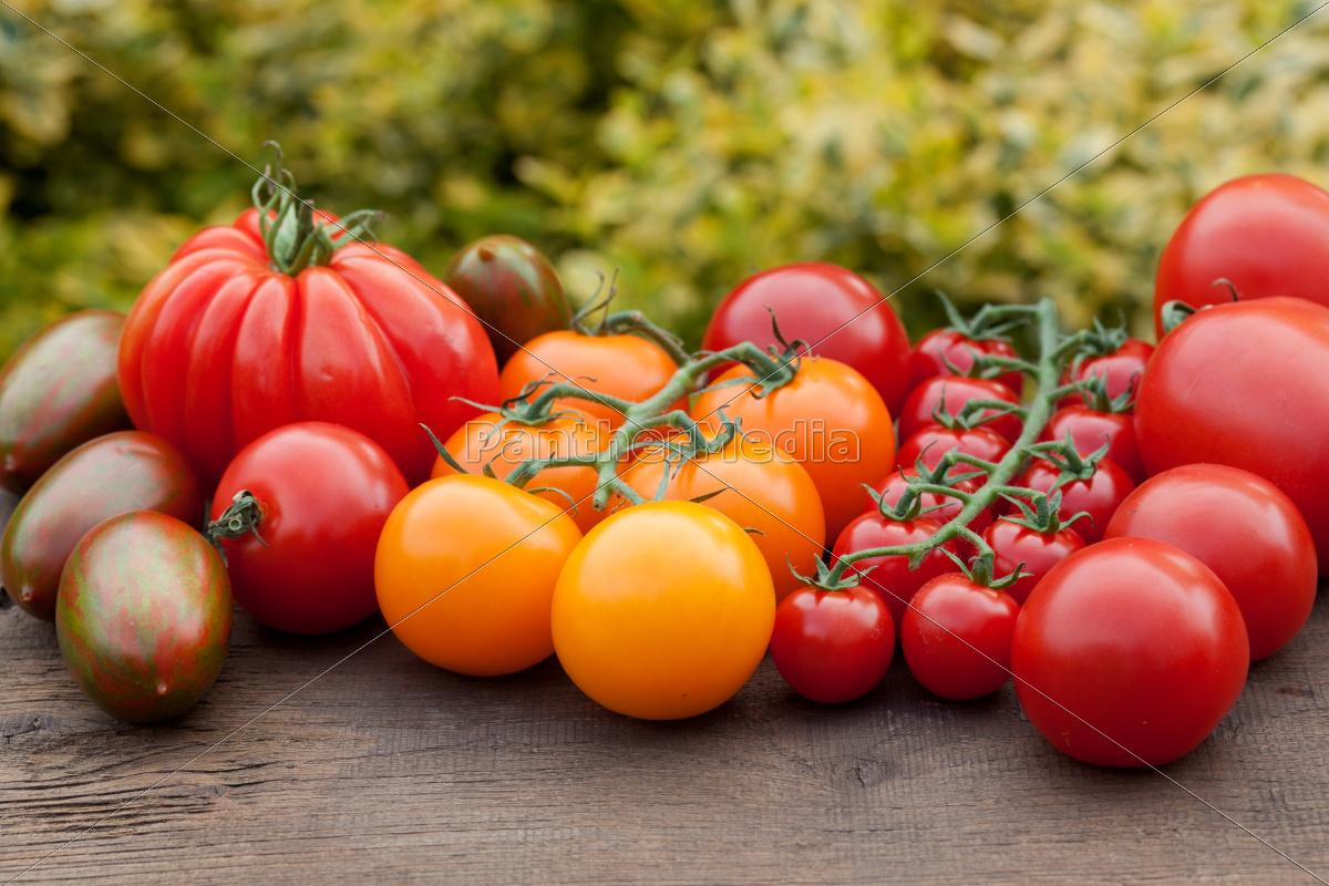 fresh, tomatoes - 10323559