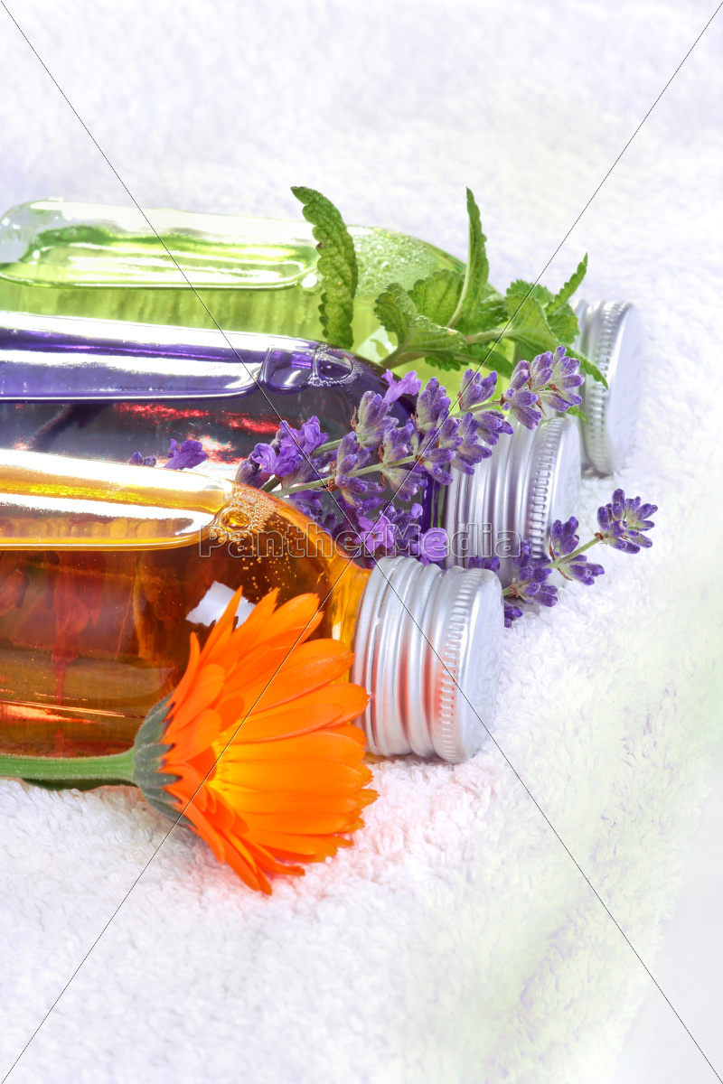 wellness, with, medical, plants - 10323047