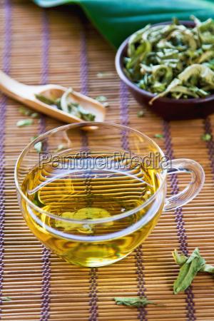 verveine tea or verbena tea