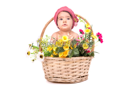 flower, baby - 10386385