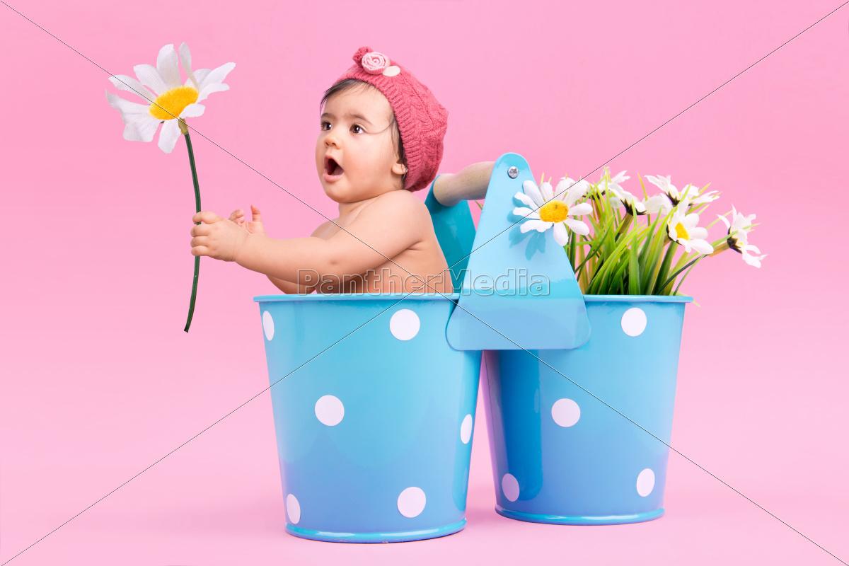 flower, baby - 10386485