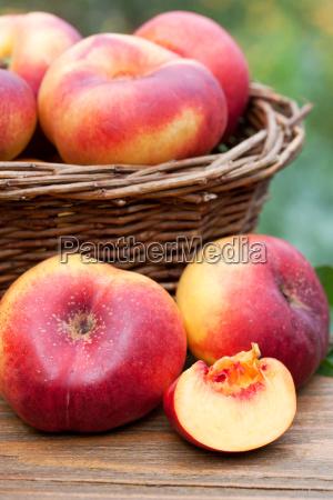 delicious nectarines