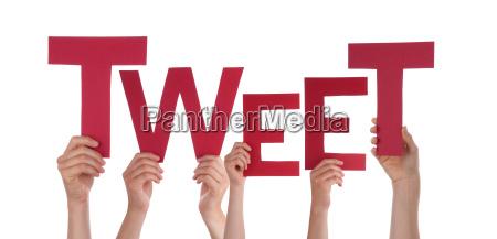 hands, holding, tweet - 10419871