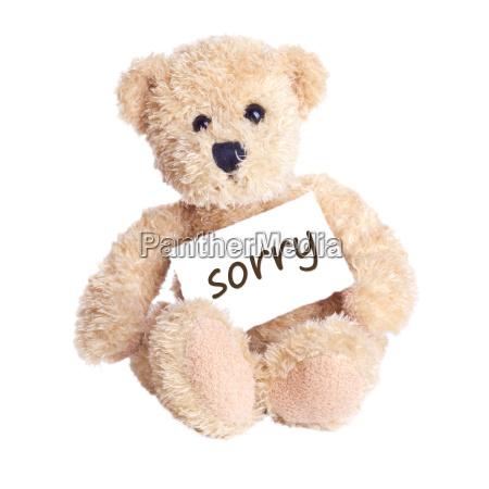 sorry, excuse, apology, sad, note, notes - 10510443