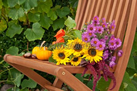 sunflower sunflowers flower flowers blossom autumn
