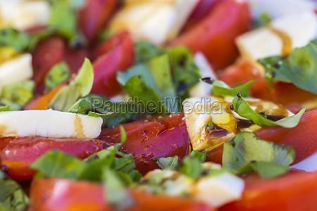 antipasti tomato and mozzarella