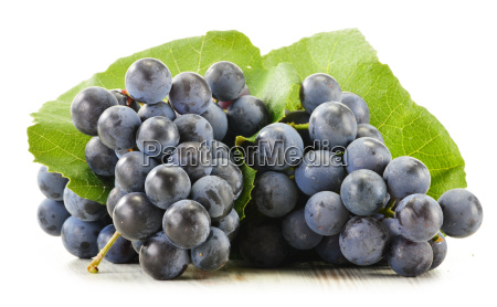 bunch of fresh red grapes isolated