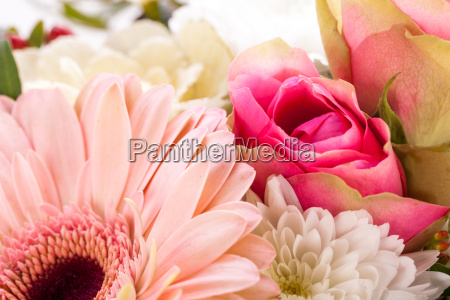 fresh beautiful cut flowers bouquet in