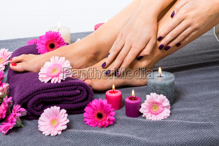 beautiful well groomed female feet with
